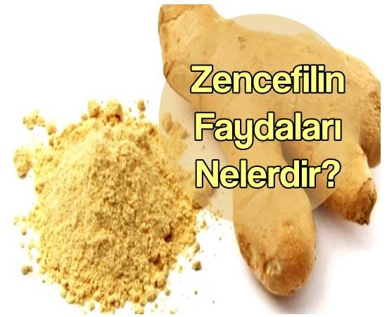 zencefilin-faydalari