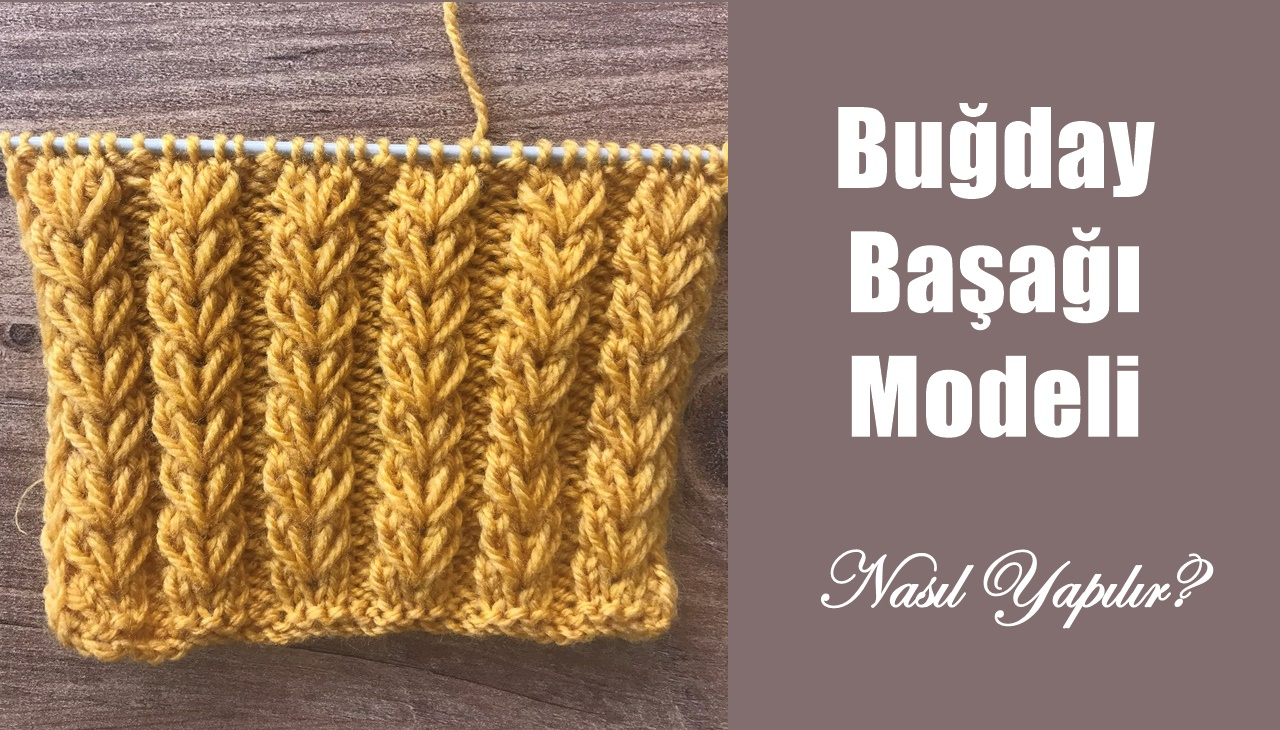 bugday-basagi-orgu-modeli